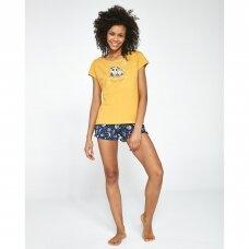 Moteriška pižama Owls 520/195