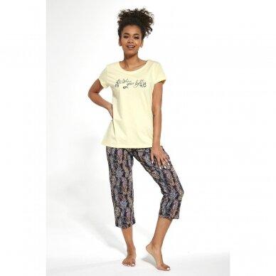 Moteriška pižama Shine 665/245 7