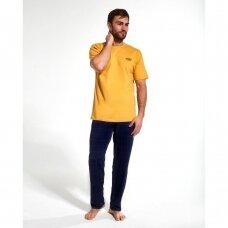 Vyriška pižama 134/165