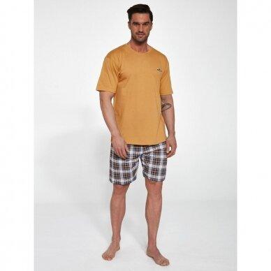 Vyriška pižama Mark 326/111