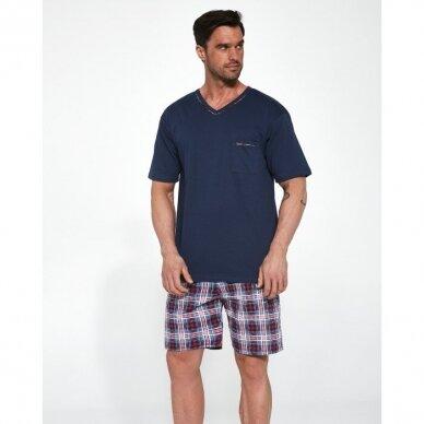 Vyriška pižama Steve 329/113