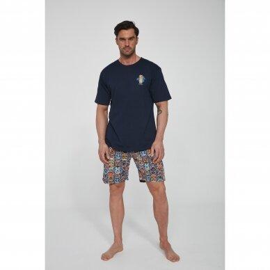 Vyriška pižama Ethnic 326/109