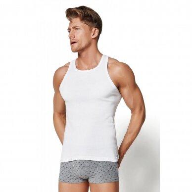 Vyriški marškinėliai 1480